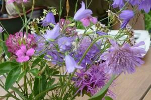 bloemen_tafel blauw bloemen zaaien